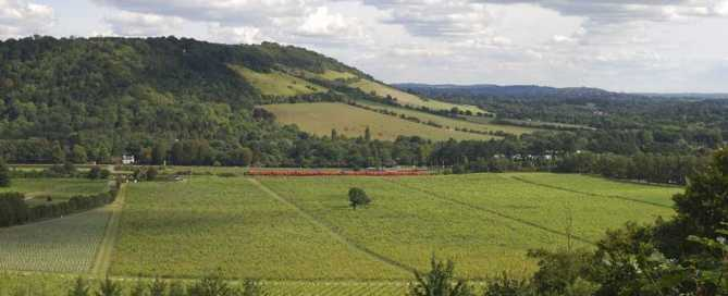 photodune-4043683-north-downs-dorking-surrey-england-s