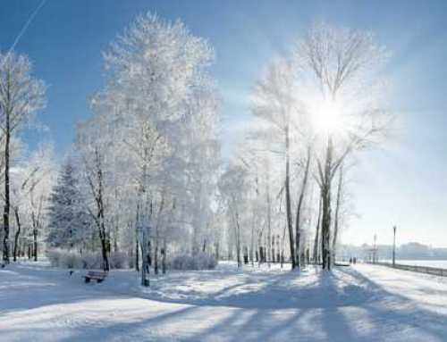 Things To Do When Visiting Us During The Winter
